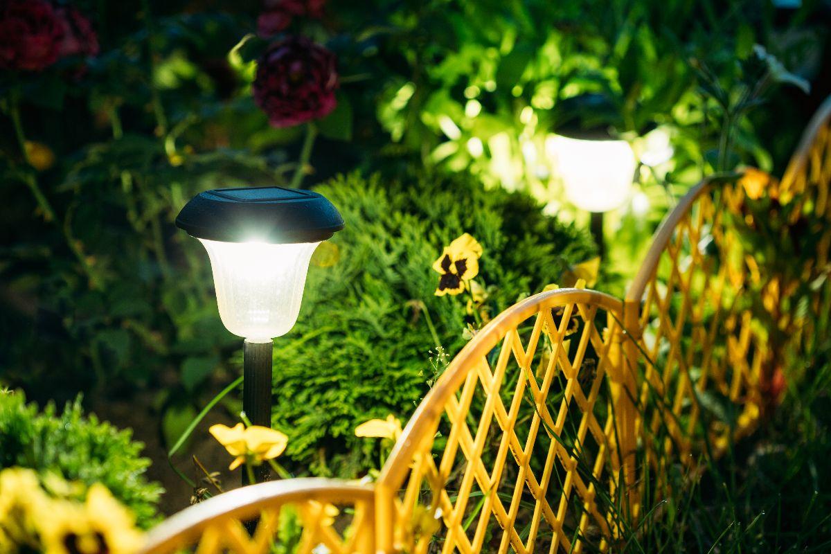 outdoor solar spotlights in the frontyard